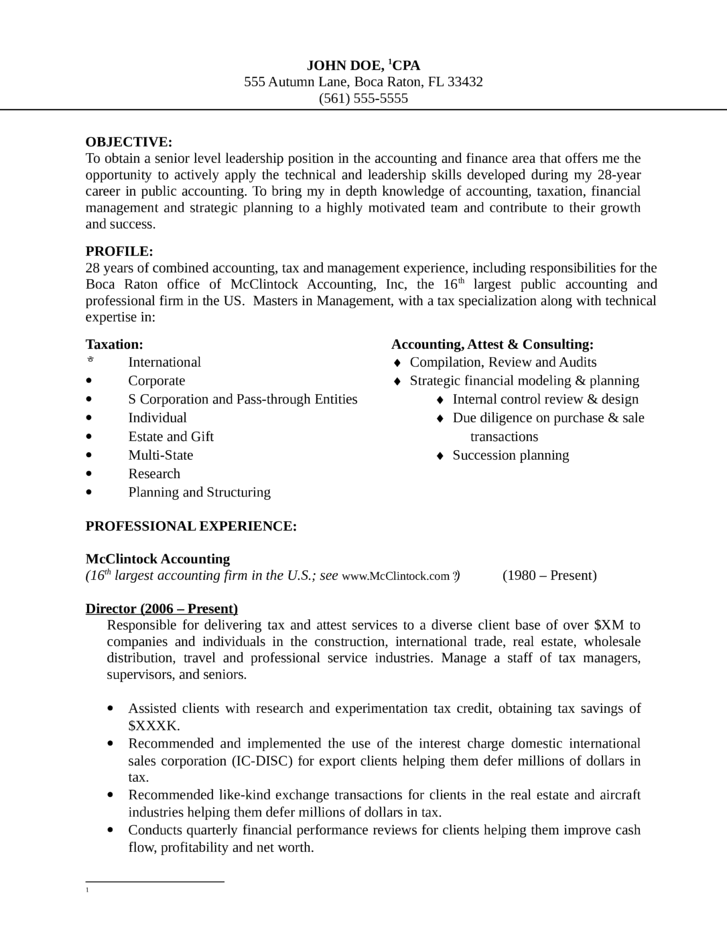 basic finance manager resume template