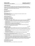 Basic Tax Accountant Resume