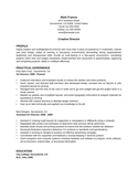 Clean Art Director Resume