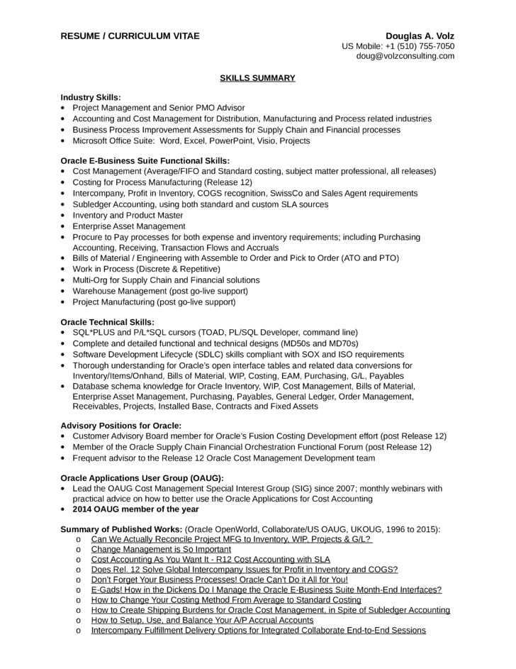 executive business process analyst resume template