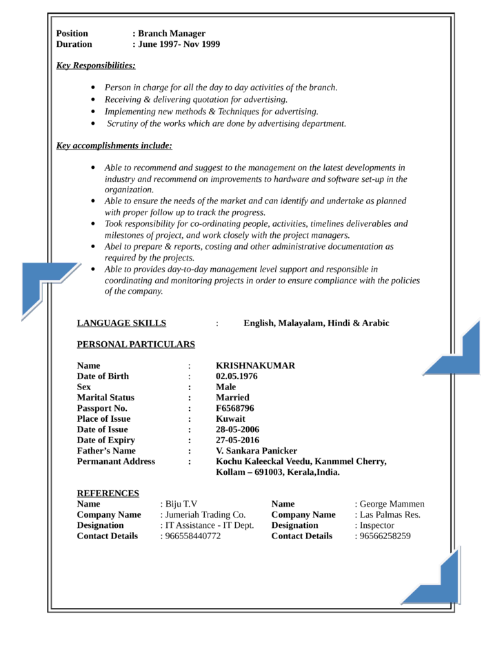 executive oracle developer resume template
