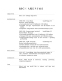 Executive Sales Manager Resume Example