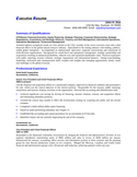 Executive VP Director of Finance Resume