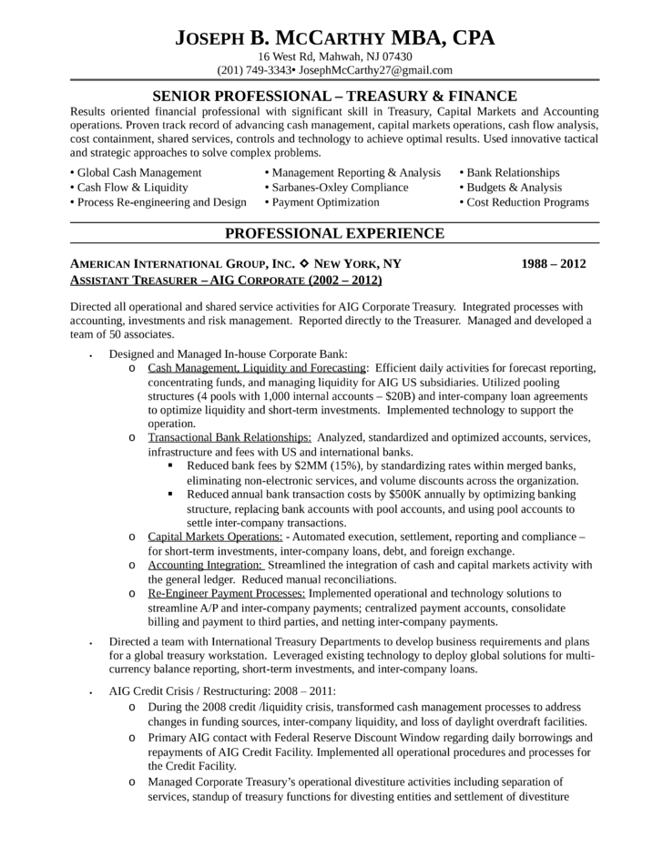 modern director resume example template