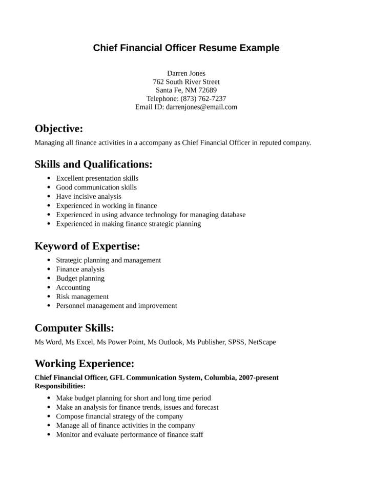 professional chief financial officer resume template