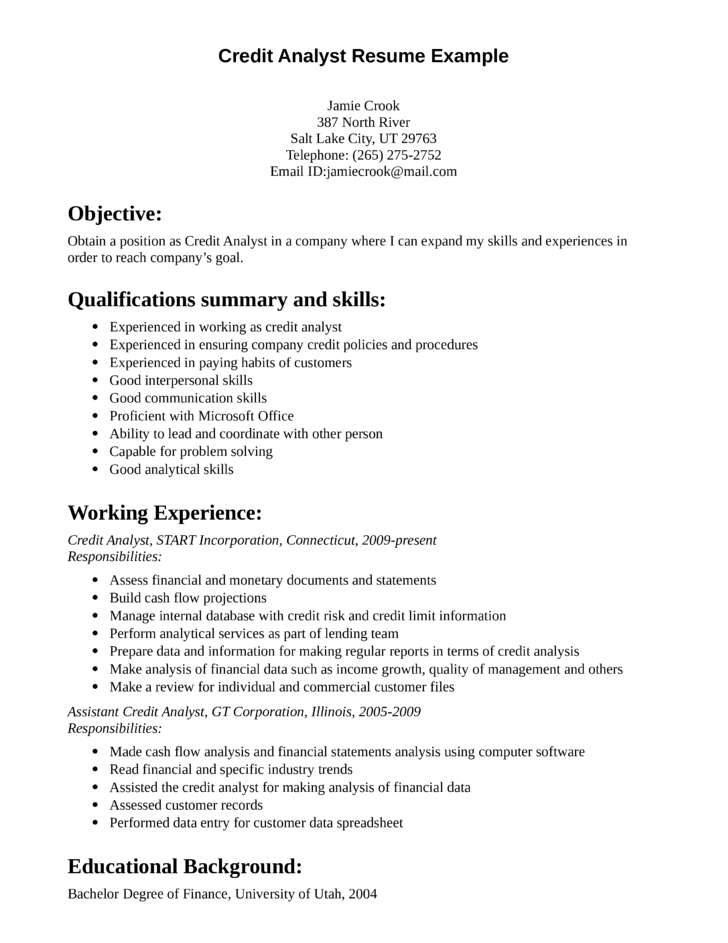 Professional Credit Analyst Resume Template