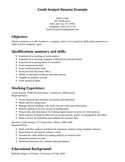 Professional Credit Analyst Resume