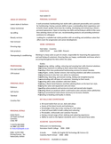 Professional Hair Stylist Resume