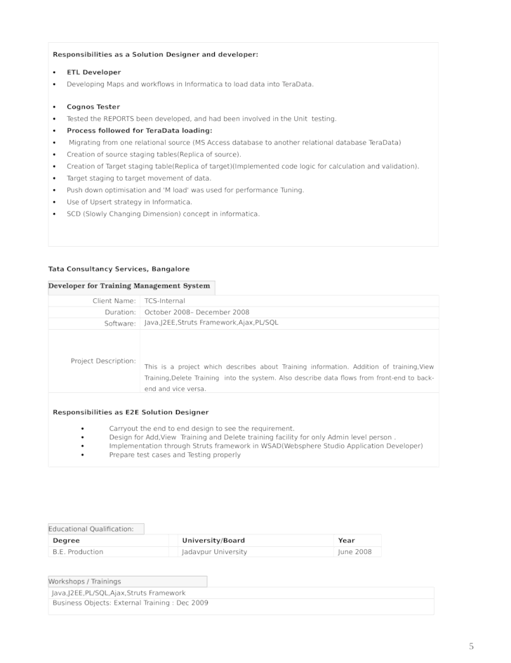 professional informatica developer resume template page 5