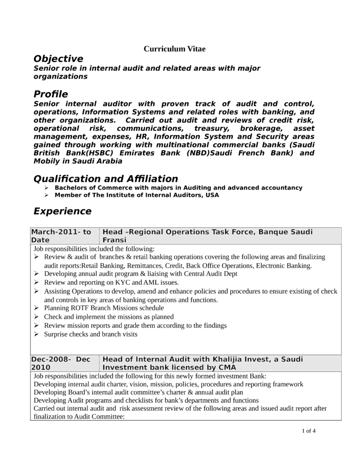 professional internal auditor resume