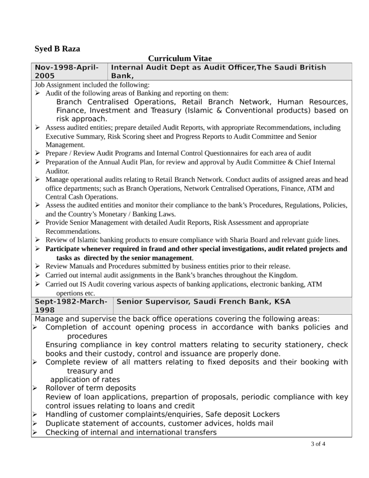 Professional Internal Auditor Resume Template | page 3