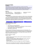Professional IT Specialist Resume