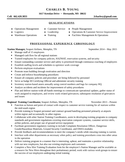 Professional Travel Agent Resume