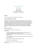 Professional Treasury Analyst Resume